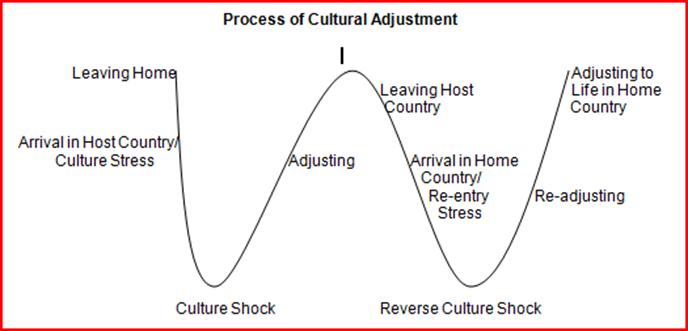 Process of Cultural Adjustment graph