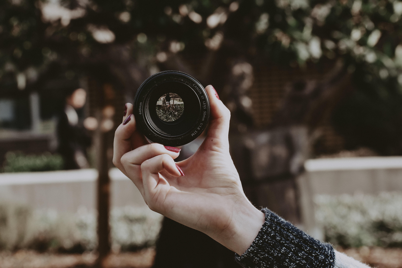 photo contest 2019 photo